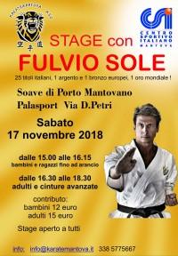 Stage di Karate Shotokan con il M° Fulvio Sole