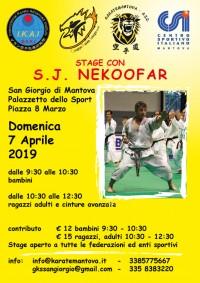 Stage di Karate Shotokan con il M° Nekoofar a Mantova
